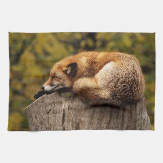 fox Teetuch, foxy Küchentuch, Fuchs-Wohngestaltung Küchentuch