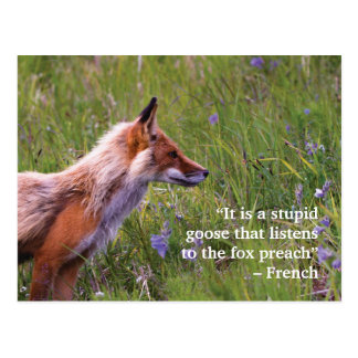 Fox-Tier-Postkarte Postkarte