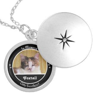 Foxtail Locket