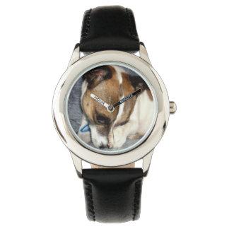 Foxterrier-schüchternes Gesicht, Unisex Armbanduhr