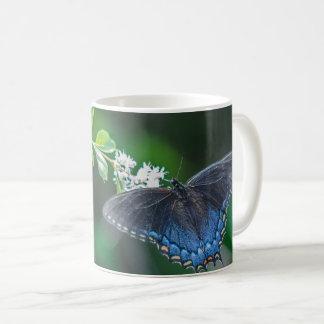 Frack Kaffeetasse