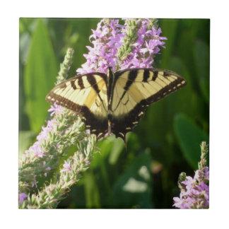 Frack-Schmetterling auf lila Wildblumen Fliese