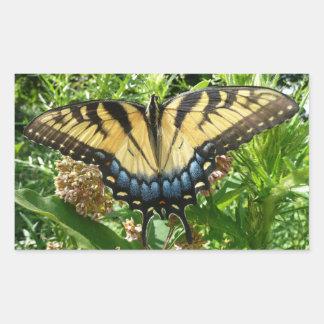 Frack-Schmetterling II bei Shenandoah Rechteckiger Aufkleber