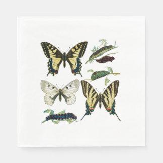 Frack-Schmetterlinge, Raupen und Motte Papierserviette