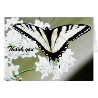 Frack-Schmetterlings-Foto danken Ihnen Karte
