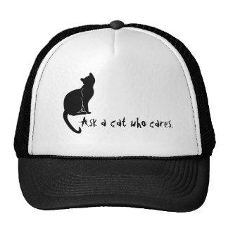 Fragen Sie eine Katze, die Hut sich interessiert Truckermützen