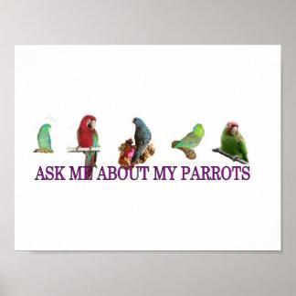 Fragen Sie mich über meine Papageien Poster
