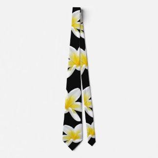 Frangipani, _Flowers, Krawatte