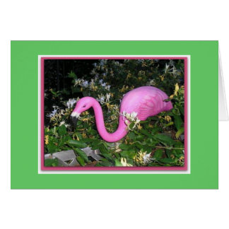 Frank der Flamingo Karte