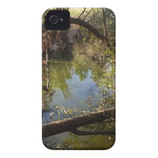 Franklin-Schlucht-Park See 4 iPhone 4 Hülle