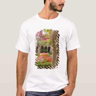 Frankreich, De Provence, Klöster St. Remy an T-Shirt