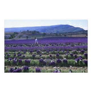 Frankreich, PACA, Albes-De-Haute-Provence, manuell Fotodruck