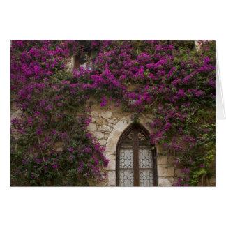 Frankreich, Provence, Eze. Helles Rosa Karte