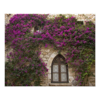 Frankreich, Provence, Eze. Helles Rosa Photo Druck
