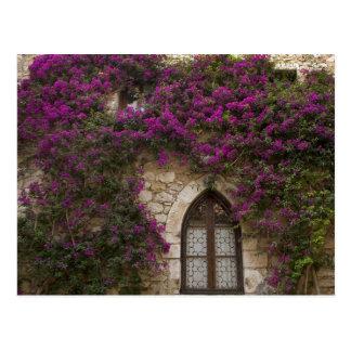 Frankreich, Provence, Eze. Helles Rosa Postkarte