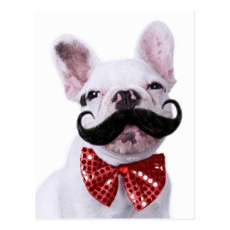 Franzose-Stier-Hundewelpe mit dem Schnurrbart Postkarte