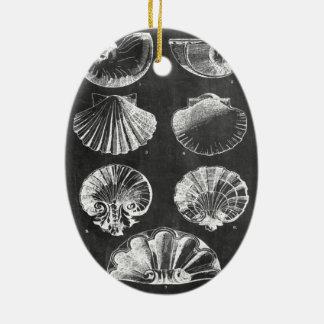französische botanische Kunsttafel Küstenseashells Keramik Ornament
