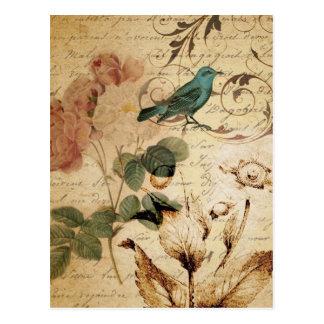 französische botanische Rose viktorianischer Vogel Postkarte