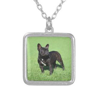 Französische Bulldogge 2 Personalisierte Halskette