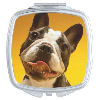 Französische Bulldogge, die oben schaut Taschenspiegel