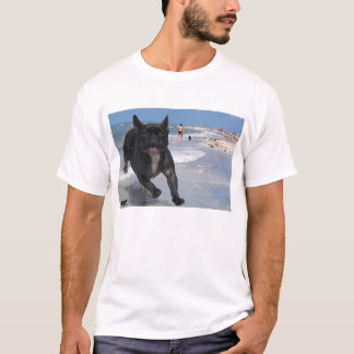 Französische Bulldogge in Sanibel, FL T-Shirt