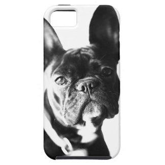 Französische Bulldogge iPhone 5 Schutzhülle