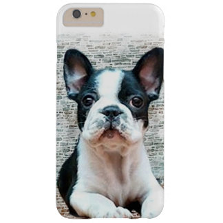Französische Bulldogge iPhone 6 Plusfall Barely There iPhone 6 Plus Hülle