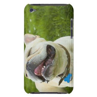 Französische Bulldogge iPod Touch Cover