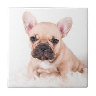 Französische Bulldogge Keramikfliese