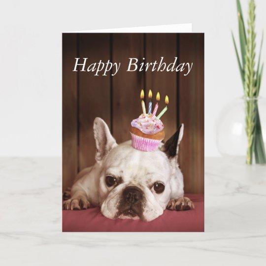 Französische Bulldogge Mit Geburtstags Kleinem Karte Zazzlede