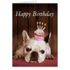 Französische Bulldogge mit Geburtstags-kleinem Karte