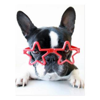 Französische Bulldogge mit roten Stern-Gläsern Postkarte