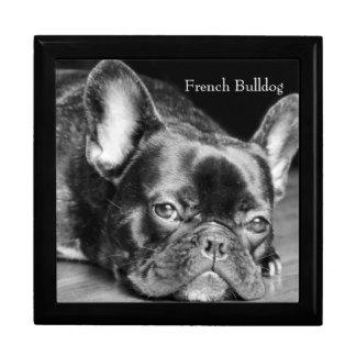 Französische Bulldogge Schmuckschachtel