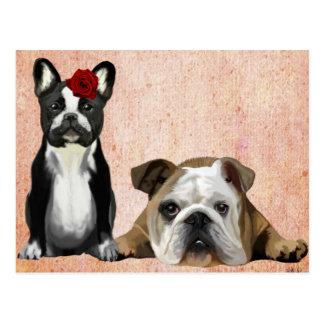 Französische Bulldogge und englische Bulldogge Postkarte