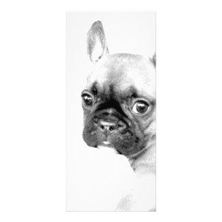 Französische Bulldogge Werbekarte