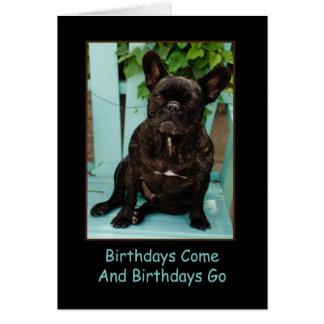 Französische Bulldoggen-Geburtstags-Karte lustig Grußkarte