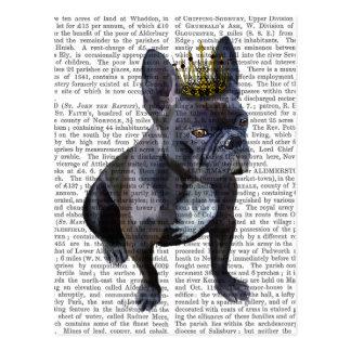 Französische Bulldoggen-König Postkarten