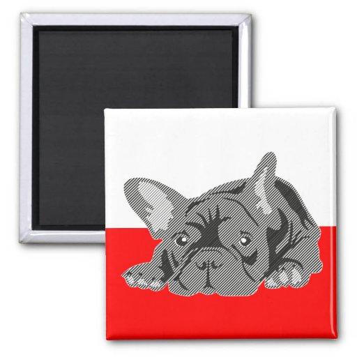 Französische Bulldoggen-Magnet Kühlschrankmagnet