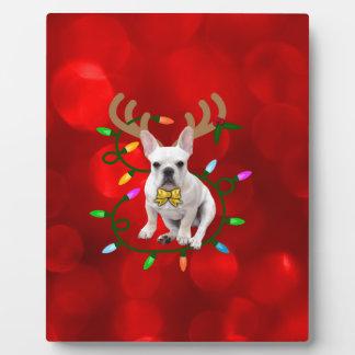 Französische Bulldoggen-Ren Fotoplatte