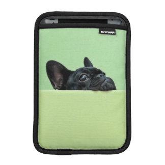 Französische Bulldoggen-Welpe, der über Wand iPad Mini Sleeve