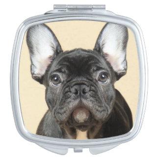 Französische Bulldoggen-Welpe Schminkspiegel
