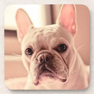 Französische Bulldoggen-Welpe Untersetzer