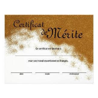 Französische Klassen-generisches Zertifikat der Flyer