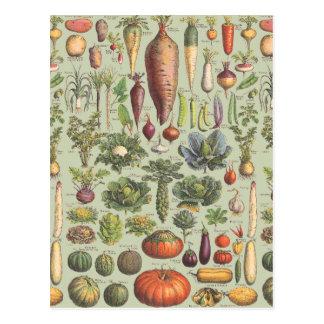 Französischer Führer zum Garten Postkarte