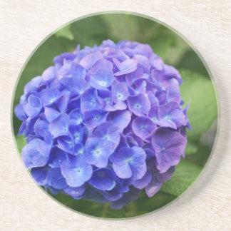 Französischer Hydrangea (Hydrangea macrophylla) Untersetzer