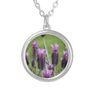 Französischer Lavendel-Halskette Halskette Mit Rundem Anhänger