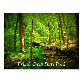 Französischer Nebenfluss-Staats-Park Postkarte