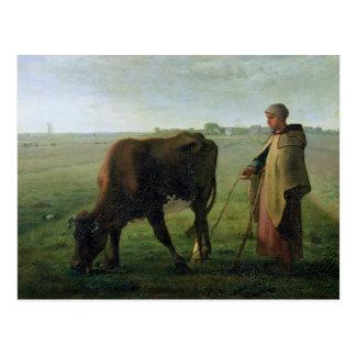 Frau, die ihre Kuh, 1858 weiden lässt Postkarte