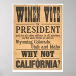 Frauen-Abstimmungs-Breitseite (1873A) Plakatdruck