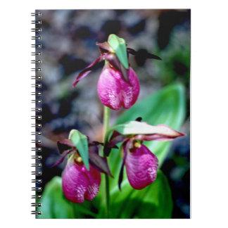 Frauenschuh I, rosa grüne Garten-Freude Notizblock